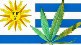 uruguay-first-country-to-legalize-marijuana_01